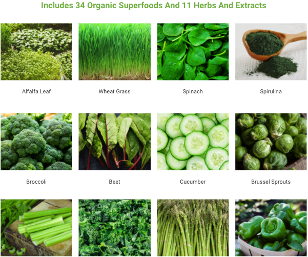 Daily Greens Ingredients
