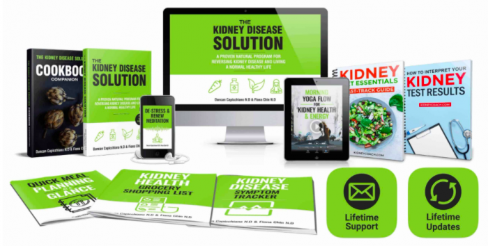 The Kidney Disease Solution Book
