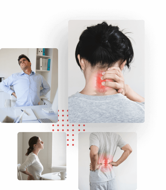 The Complete Back Pain Relief Program
