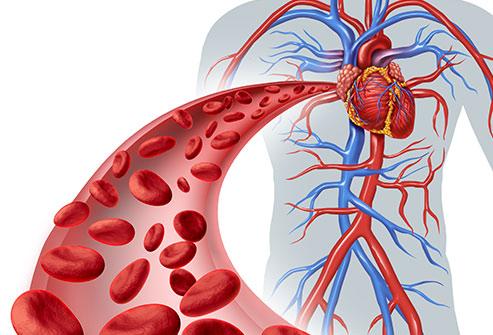 Blood Balance Formula Review - 100% Natural Ingredients?