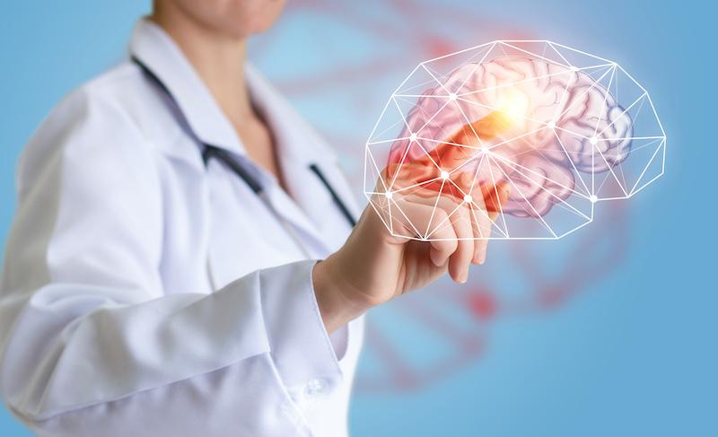PureHealth Research Ageless Brain Dosage - A Safe Brain Health Supplement