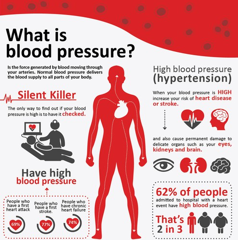 The High Blood Pressure Handbook Blueprint - User Truth Revealed!