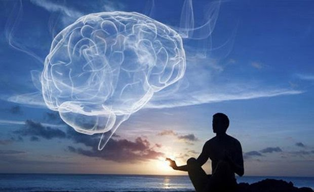 Zenith Brain C-13 Review