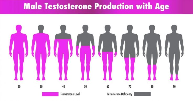 Male Diabetes Solution Testosterone Support Formula Ingredients List - Any Side Effects?
