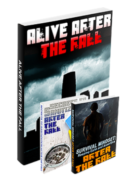 Alive After The Fall 2 Review