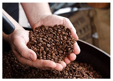 Lifeboost Coffee Organic Medium Roast
